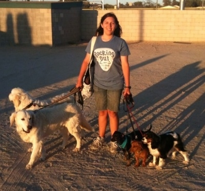A lady in a blue t-shirt that says 'Rocking Out!' is standing in dirt with five leashed dogs and a tan brick wall behind her.