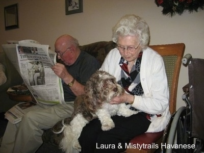 A man is sitting in a chair and reading a newspaper and to the right of him is a lady in a chair with a gray and white dog in her lap. The lady is rubbing the dogs chin.