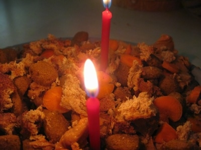 Close Up - Candles on top of the dog food cake
