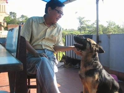 A black and tan German Shepherd is sitting outside on a red tiled floor on a porch and there is a man in a chair petting under the dogs chin. There is a second dog laying down in the background.