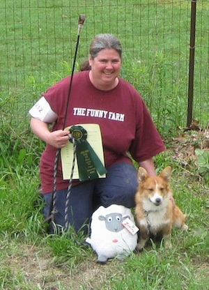 A lady in a burgundy shirt that reads - The Funny Farm - is kneeling next to the tan with white Pembroke Welsh Corgi dog with a green ribbon and a pole with a rope on the end in her hand. There is a plush sheep doll next to it.