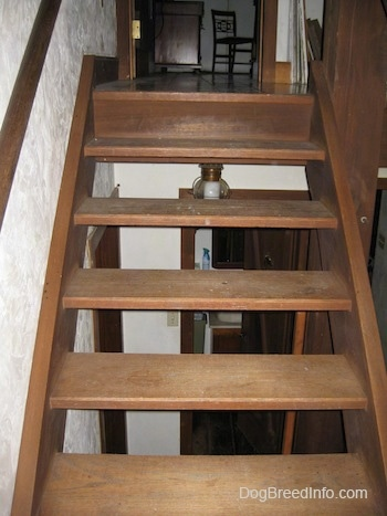 A wooden staircase that leads to a second floor of a home.