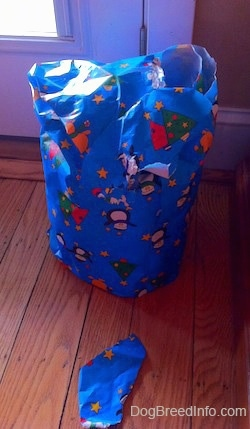 A torn wrapped gift on a hardwood floor. The wrapping paper is blue with snowmen on it.