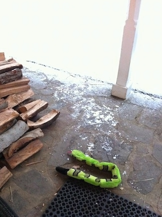A green snake is laying on a stone porch next to a stack of split logs. Next to the porch is a lot of snow.