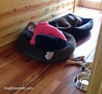 Sara hugging Spencer in the dog bed. Bruno is Sleeping in the Dog bed behind them