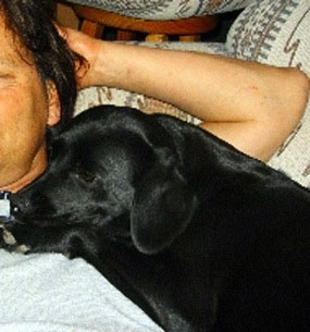 Close Up - Rani the Cavador is laying on a persons chest