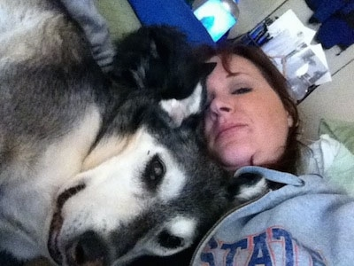 Roo the Coydog is laying on top of a lady who is taking a selfie