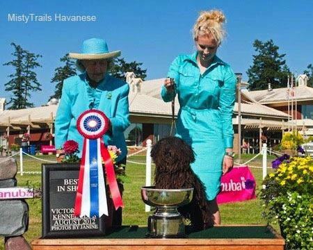 A Corded Havanese is standing with its front paws in a trophy cup. There is a lady in teal-blue behind the dog holding its leash. There is a second lady in teal-blue next to them holding a red, white and blue ribbon