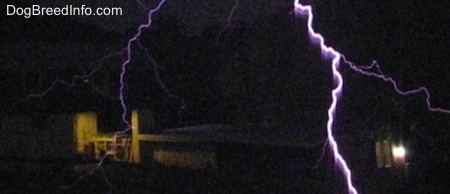 lightning striking the ground in a persons yard