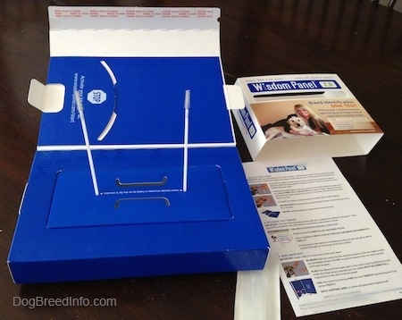 Oakley the dogs DNA test kit