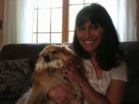 A smiling lady is sitting on a couch holding a small dog that has a rawhide bone in its mouth.