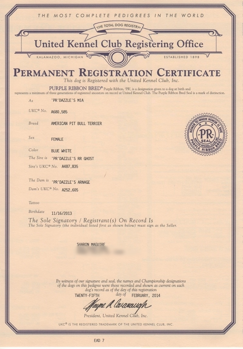 A United Kennel Club Registering Office Registration Certificate
