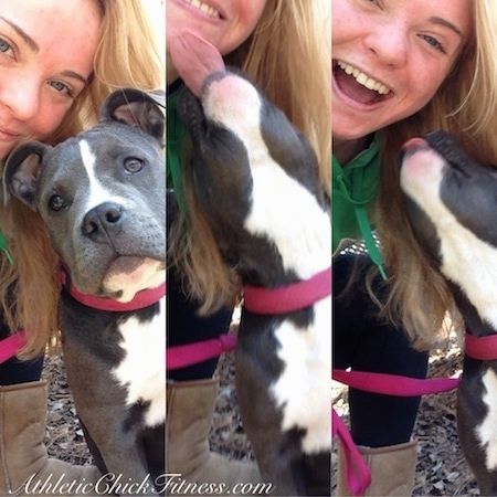 Close up - A series of images of a blonde haired girl taking pictures with a blue nose American Bully Pit puppy.