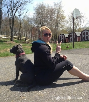 A blonde haired girl and a blue nose American Bully Pit puppy are sitting back to back on a blacktop surface.