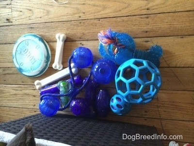 A pile of blue toys and two bones are outside of a basket.