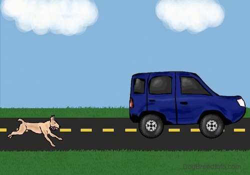 A drawn picture of a dog chasing a blue car down the road