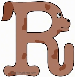 A drawn picture of a dog that is also the letter R