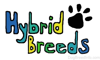 There are drawn words on the image. It reads - Hybrid Breeds. There is a paw print over top of the word breeds