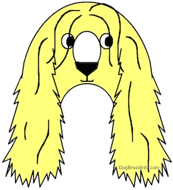 A drawn yellow Afaird dog is shaped in the letter of an A