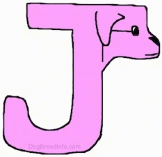 A hot-pink-purple drawn letter J that also looks like a dog
