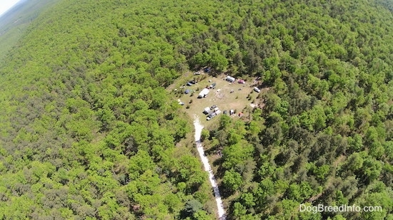 An aerial drone shot of a campground surrounded by trees.