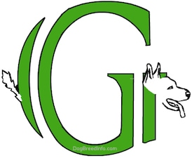 A drawn picture of a dog that is also the letter G