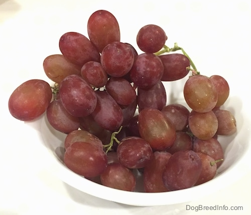 A white bowl of red grapes