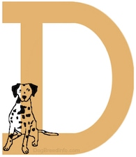 A drawn picture of a Dalmatian dog that is inside of the letter D