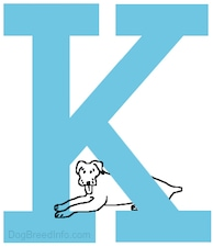 A drawn dog is laying at the base of the capital letter  K
