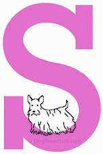 A drawn Scottish Terrier dog is standing on the base of a drawn letter S
