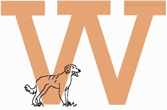 A drawn dog is standing inside of a drawn capital letter W