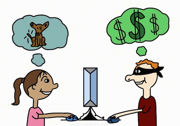 A drawn lady is using a computer and in a thought bubble over her head is a dog. On the other side is a drawn burgular using a computer and over his head in a thought bubble is a money sign. There is a computer between them.