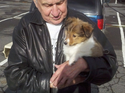 An old man in a black leather jacket is holding a small brown and white Shetland Sheepdog puppy under his arm.