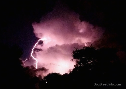 lightning striking coming from a cloud