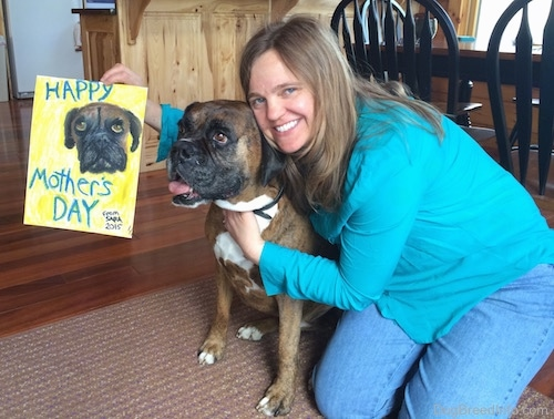 A smiling, blonde-haired lady in a teal-blue shirt and blue jeans kneeling down on a brown throw rug on a hardwood floor with her arm around a brown brindle Boxer dog while holding a yelling bordered drawling of the dog's face with the words 'Happy Mother's Day From Sara 2015'