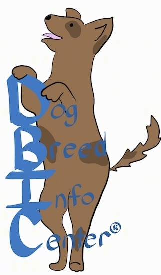 A drawling of a dog on its hind legs with the words Dog Breed Info Center(R)