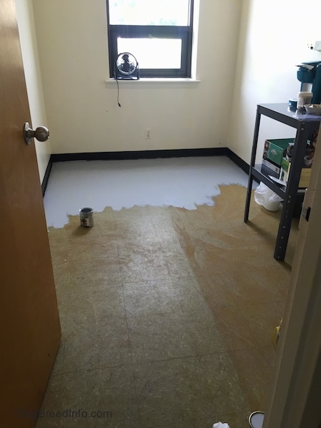 A brown floor in the middle of being painted gray inside a small storage room with a coffee maker on the left and a fan in the window.