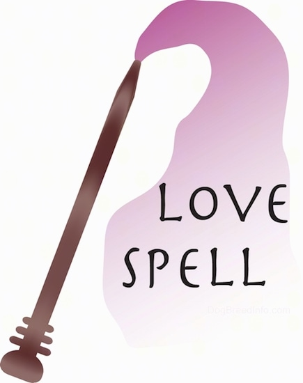 A brown wand with pink coming out of the end with the words Love Spell overlayed inside the pink.