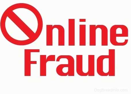 A drawn sign with red letters that says Online Fraud. The O in the word online has a line through it.