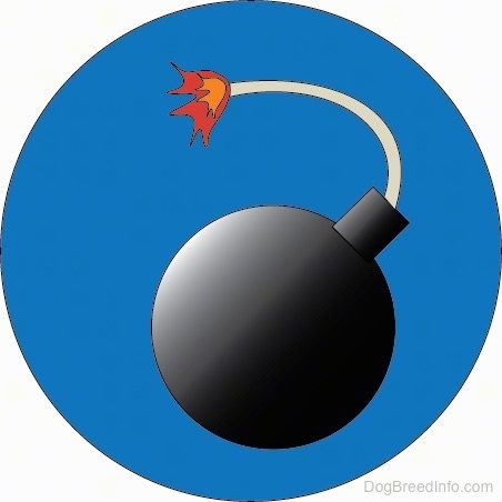 A drawn blue circle with a lit round black bomb inside of it.