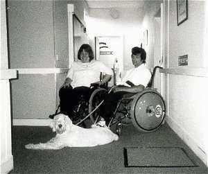 Zekey the Italian Spinone is laying in the middle of a hallway. There are two people in wheelchairs behind him.