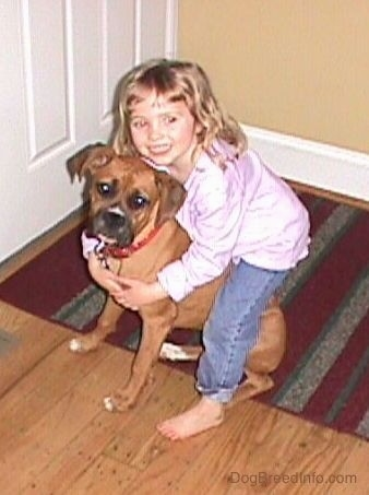 A smiling little girl with her arms around a Boxer dog inside of a house in front of a white door.