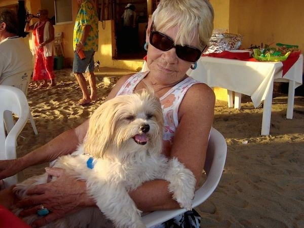 A lady with short blonde hair and dark sunglasses sitting outside on a white plastic chair with a fluffy, soft-looking little white dog on her lap.
