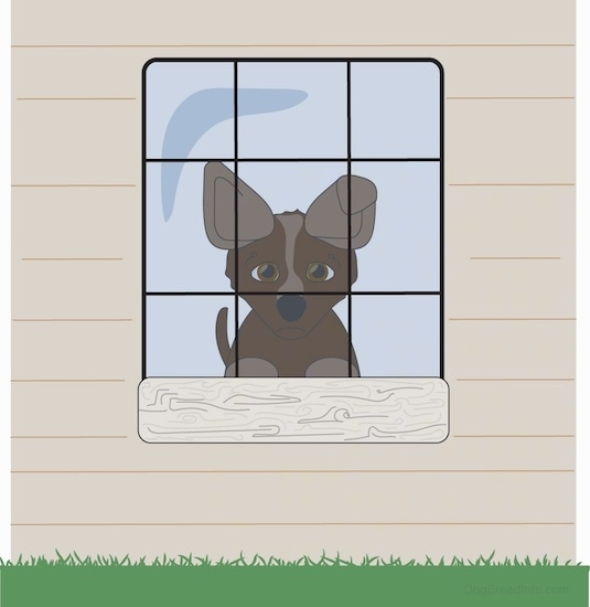 A drawling of a sad brown puppy with tan perk ears looking out the window of a tan house.