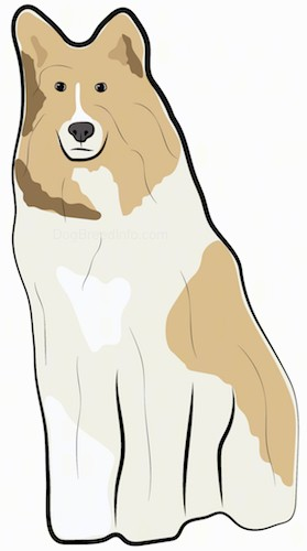 A drawing of a large breed tan with white dog with a thick coat, a long muzzle dark eyes, perk ears and a black nose sitting down.