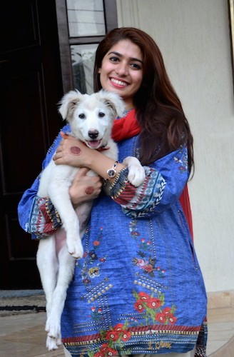 A smiling woman in a blue and white shirt holding a white happy looking large breed puppy in her arms. The pup has long legs, dark eyes, a pink tongue, a black and pink nose and fuzzy ears that fold down to the sides.