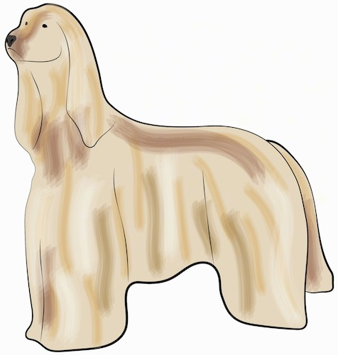Side view of a drawing of a tall tan dog with long soft ears and thick long fur, a black nose and dark eyes standing.