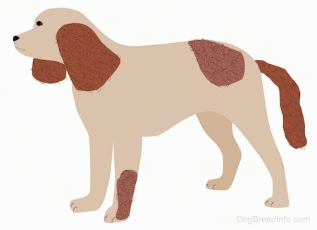 A drawing of a tan and brown spaniel looking dog with a long tail, a pointy snout, long brown ears that hang down to the sides brown patches on it, dark eyes and a black nose.