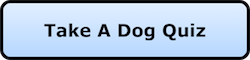 A blue nav button that say Take a Dog Quiz