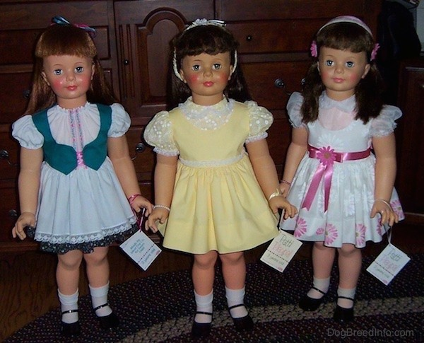 Three real looking large female dolls standing on a blue and white throw rug. The first doll has strawberry blonde hair, a white with green dress and black shoes with white socks. The middle doll has dark hair, pink cheeks and she is wearing a yellow dress with white socks and black shoes. The doll on the right has long dark hair, a pink band and flowers in her hair and is wearing a white dress with a shiny pink belt and flowers around the rim of the dress, white socks and black shoes.